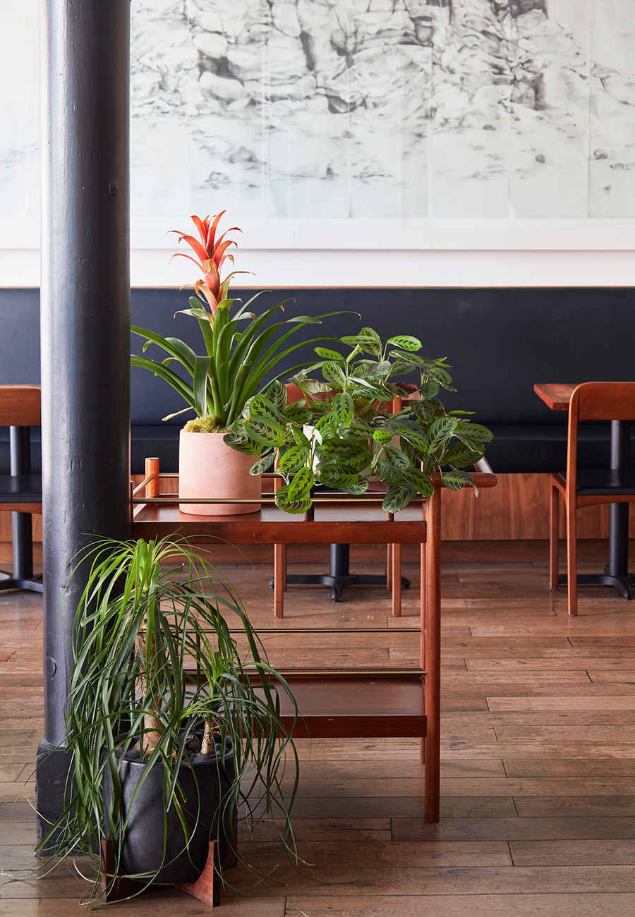 Flora-Grubb-Gardens-Mister-Juis-Designing-with-Plants.jpg