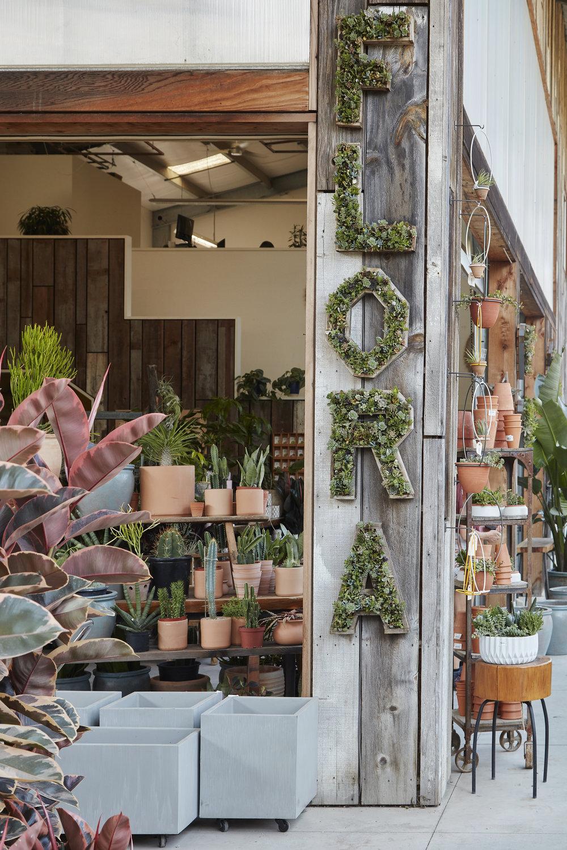 Flora Grubb Gardens Succulent Wall Letters.jpg