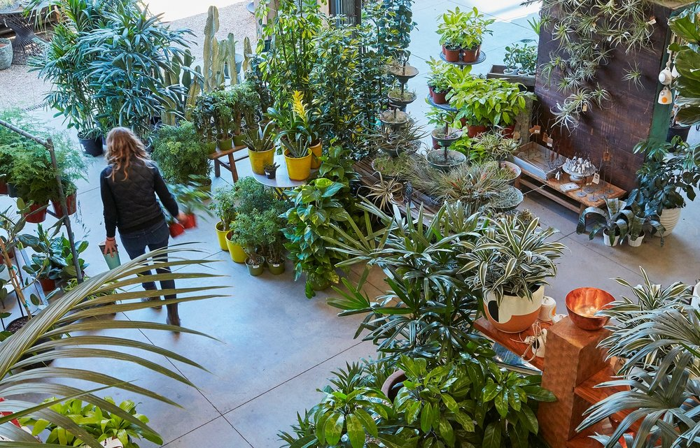 Work and Careers at Flora Grubb Gardens