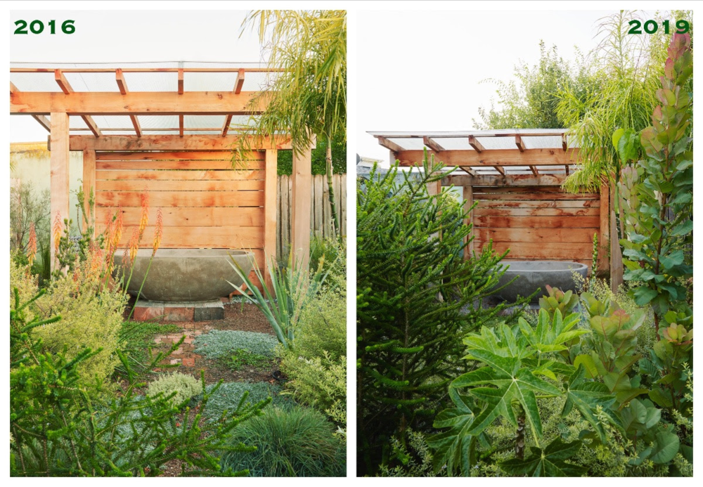 Flora Grubb Gardens - Back Yard Bath Before and After.png