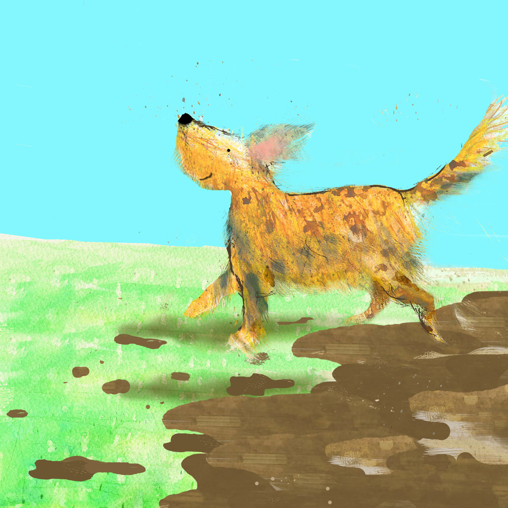 muddy dog.jpg