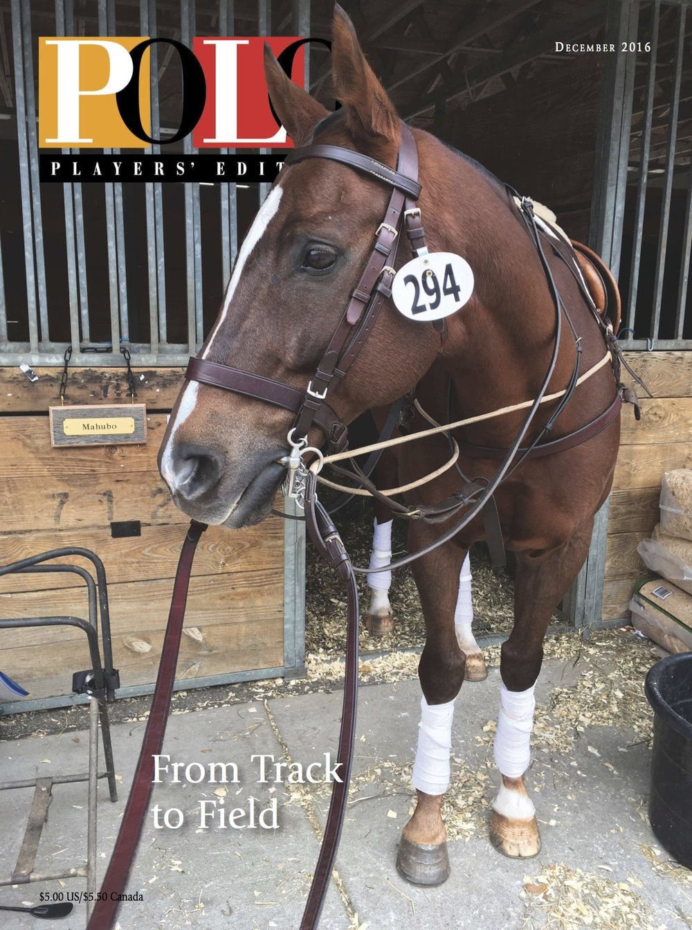 DEC 2016_POLO COVER.jpg