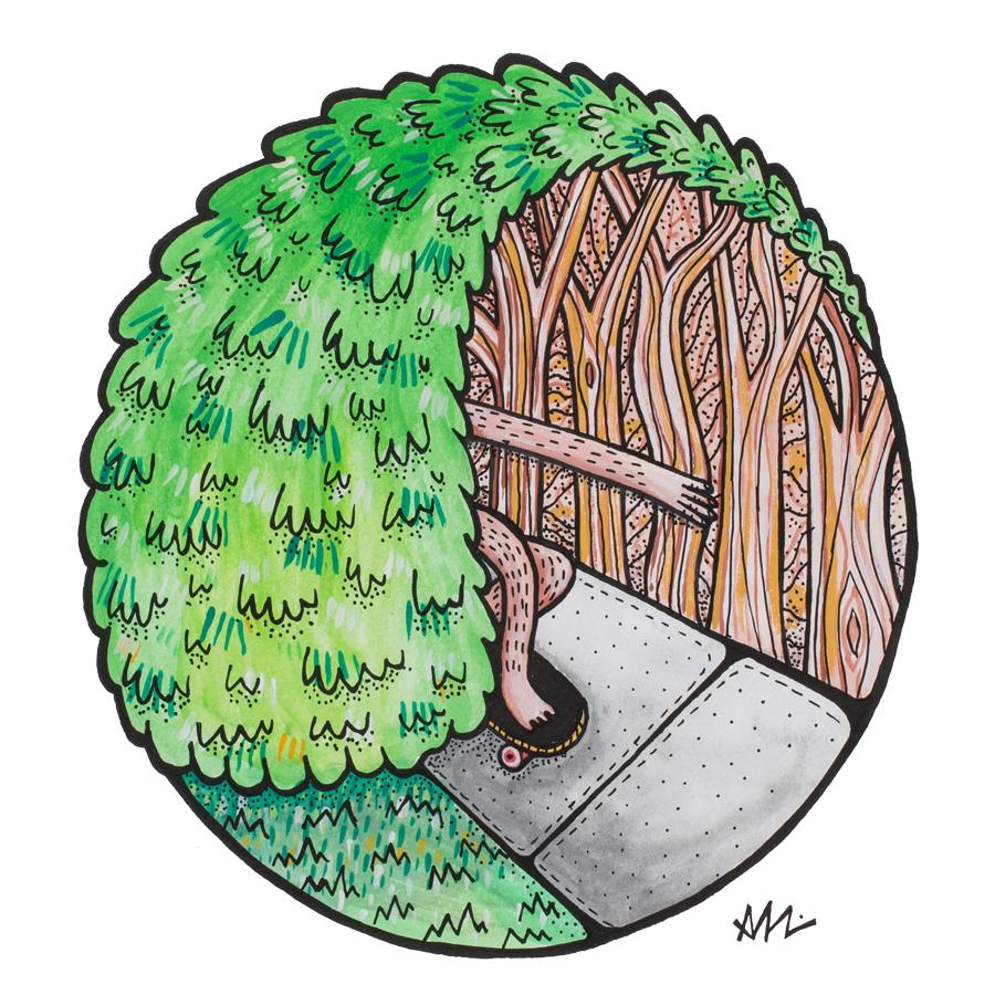 Treebarrell.jpg