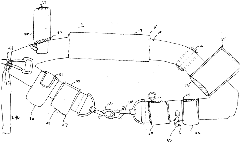 "Patent illustration for a ""pet utility belt."""
