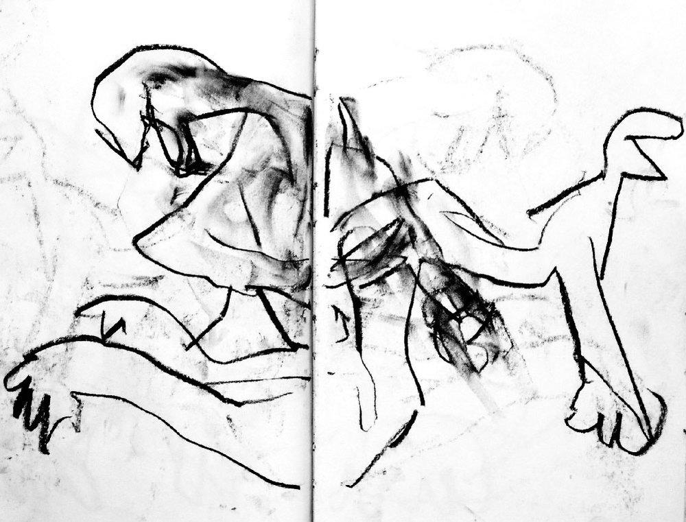 Chatoiements---galerie-du-tableau---rochegaussen.jpg