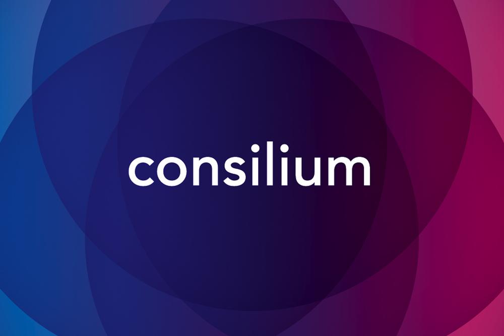 Consilium_02©TimMiness2015.jpg