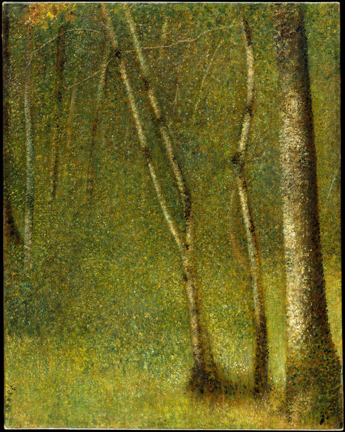 Georges-Pierre Seurat, The Forest at Pontaubert. The Metropolitan Museum.