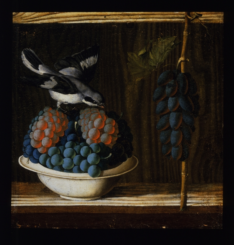 Antonio da Crevalcore – Still Life with a Bird, Grapes and Figs