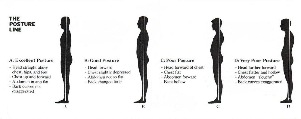 upright posture  u2014 empa