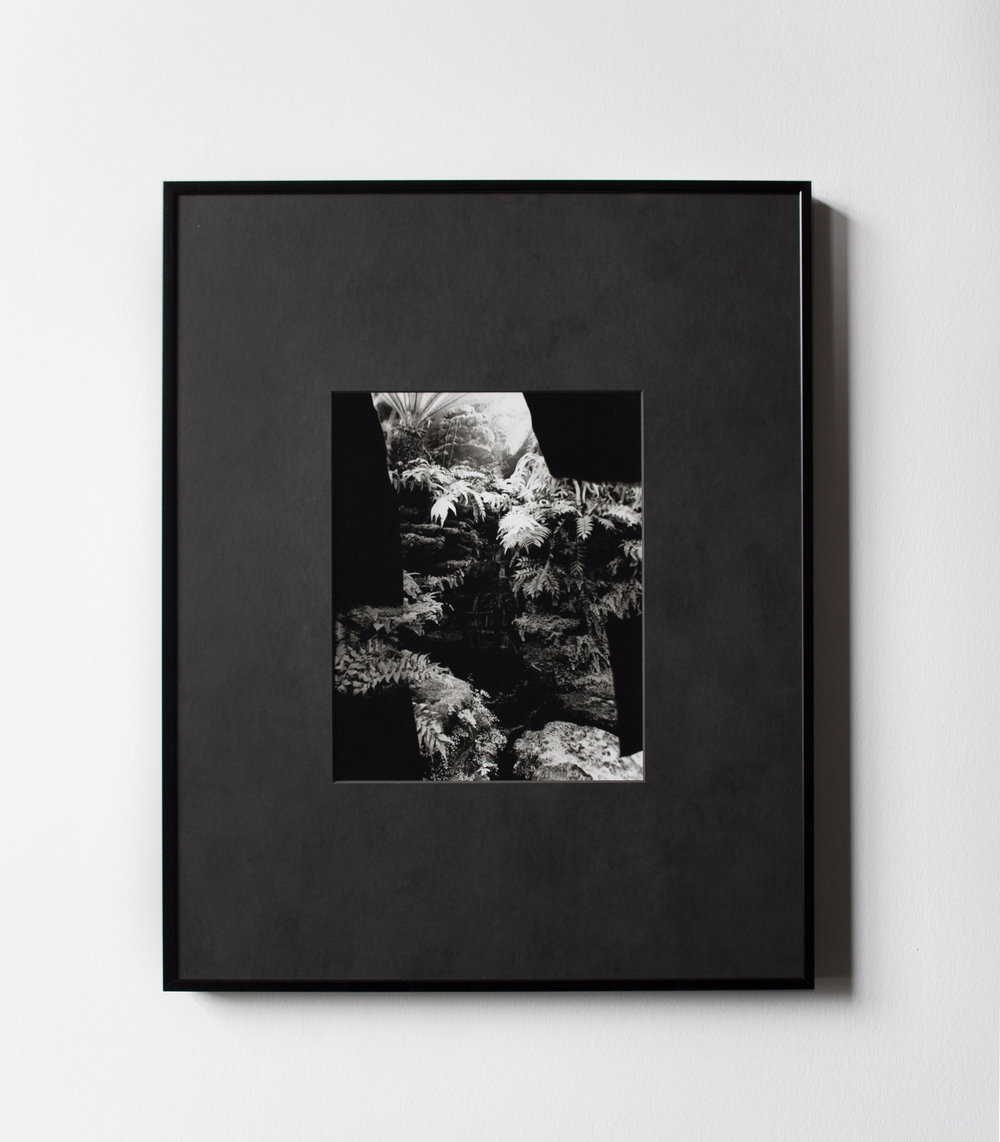 Conservatory , 2017, Unique Silver Gelatin Print, 10 x 8 inches