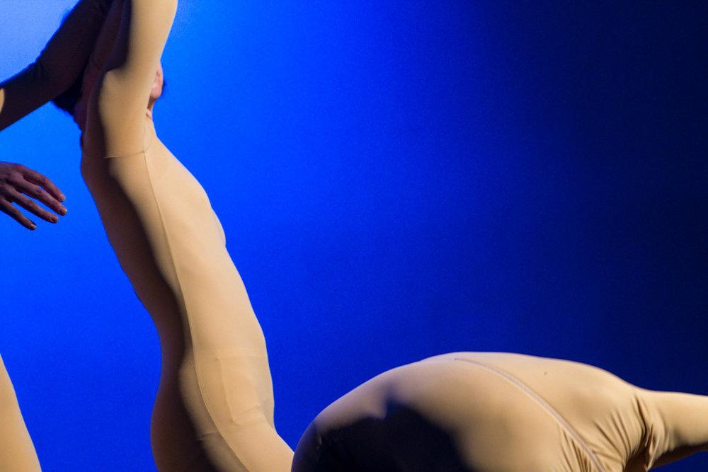 Ameile Gaulier.jpg
