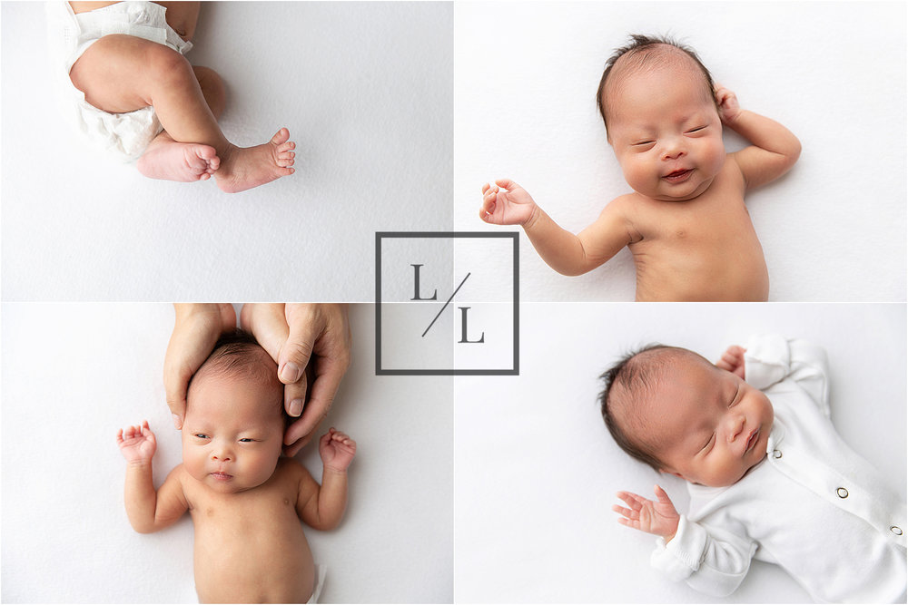 Newborn Portraits on White Backdrop.jpg