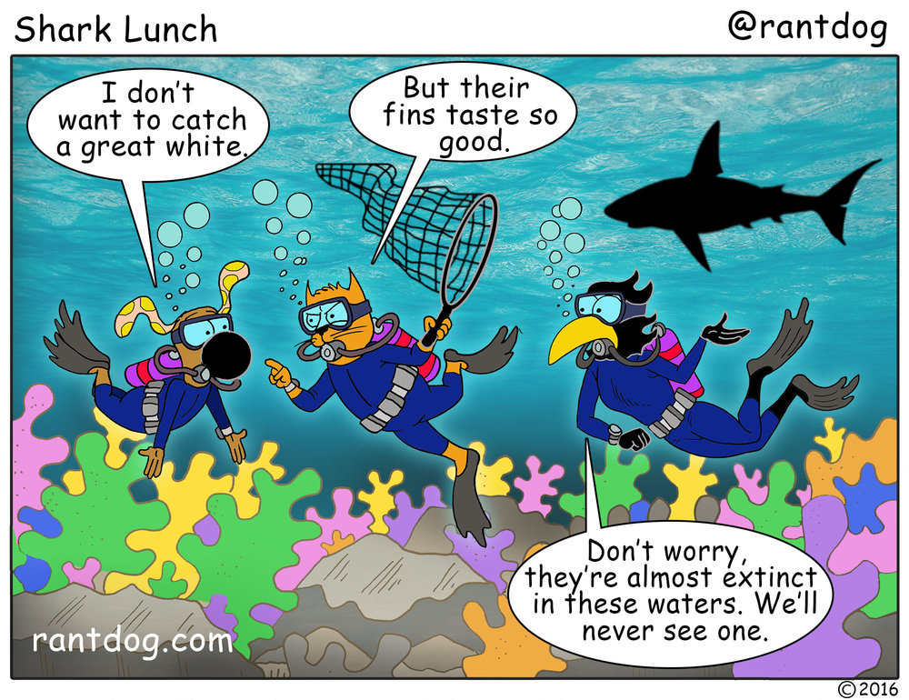 RDC_352_Shark Lunch.jpg