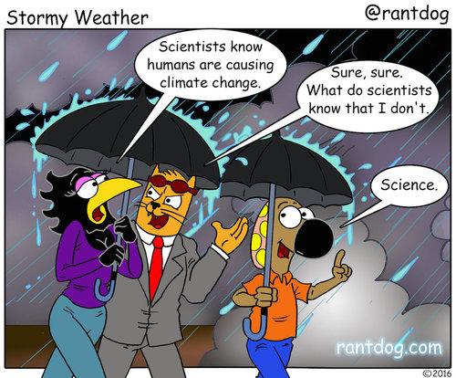 RDC_374_Stormy Weather.JPG