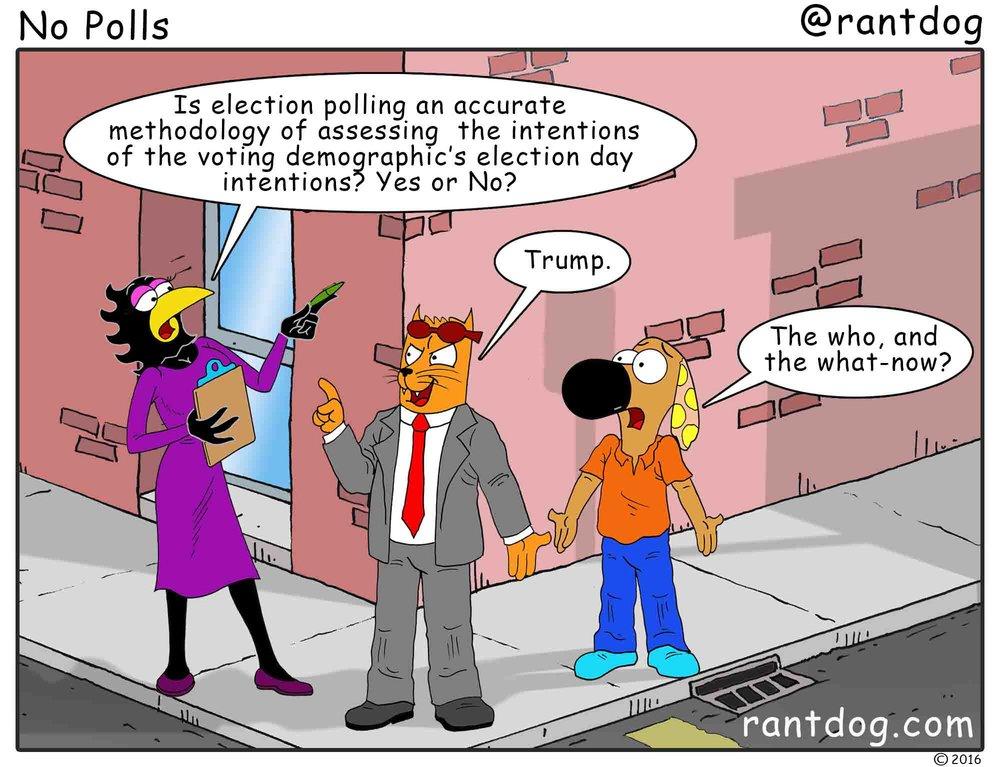 RDC_311_No Polls.jpg