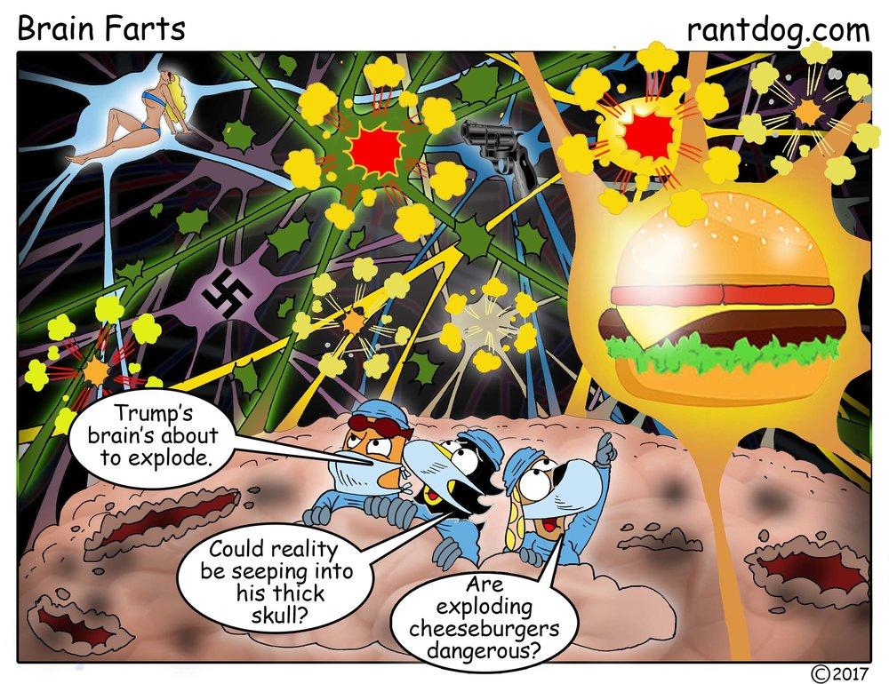 RDC_534_Brain farts.jpg