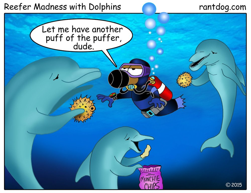rdc_160_reefer madness with dolphins_web.jpg