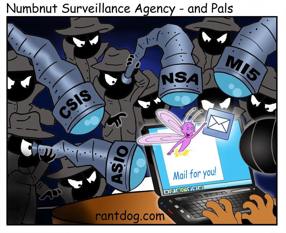 RDC_145_Numbnut Surveilance Agency & Pals_web.jpg