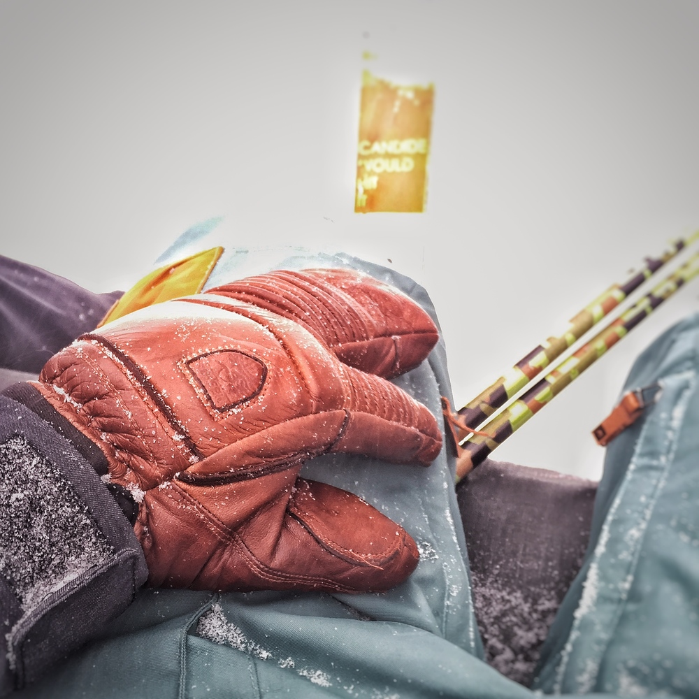 Hestra 3 Finger Gloves