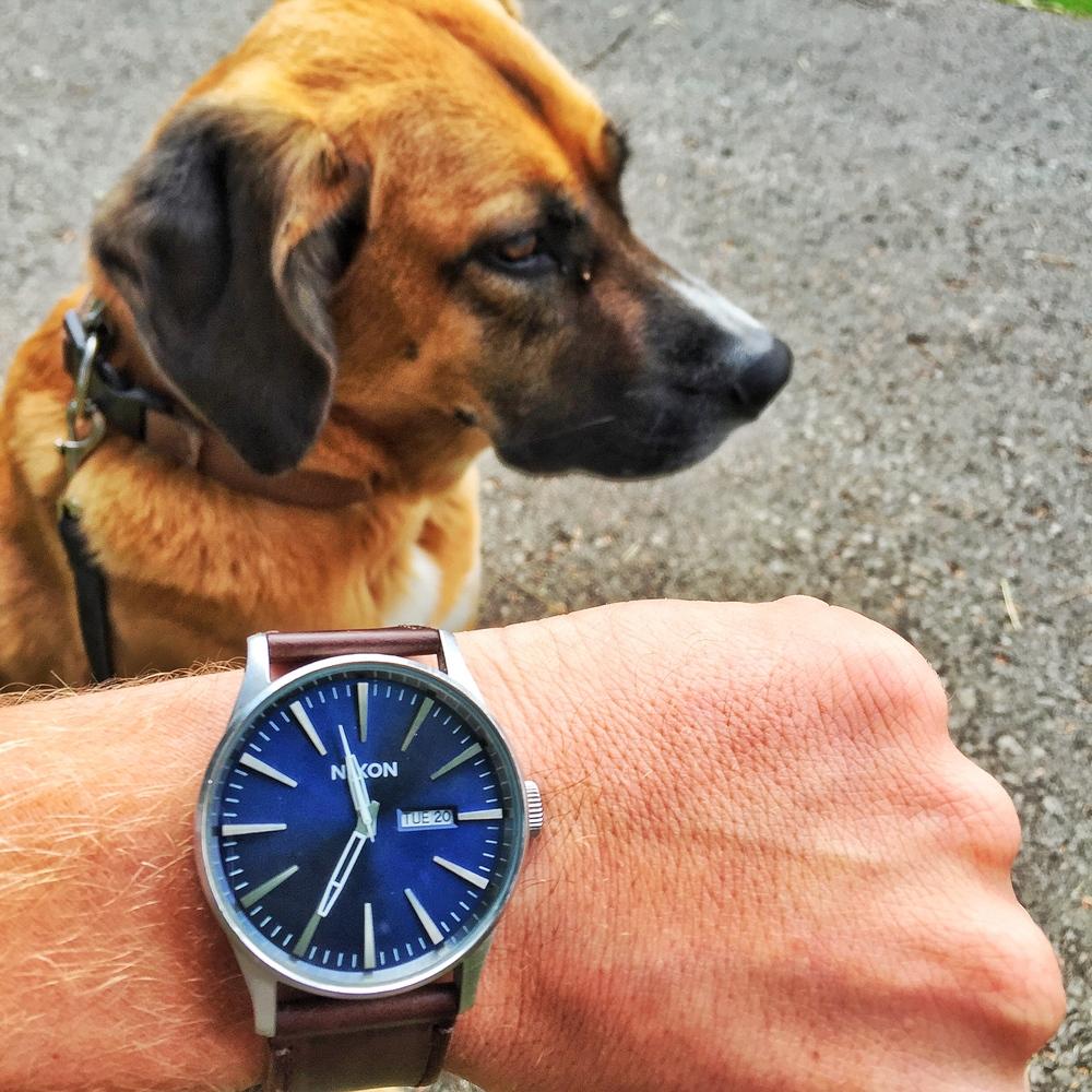 Nixon Sentry Watch