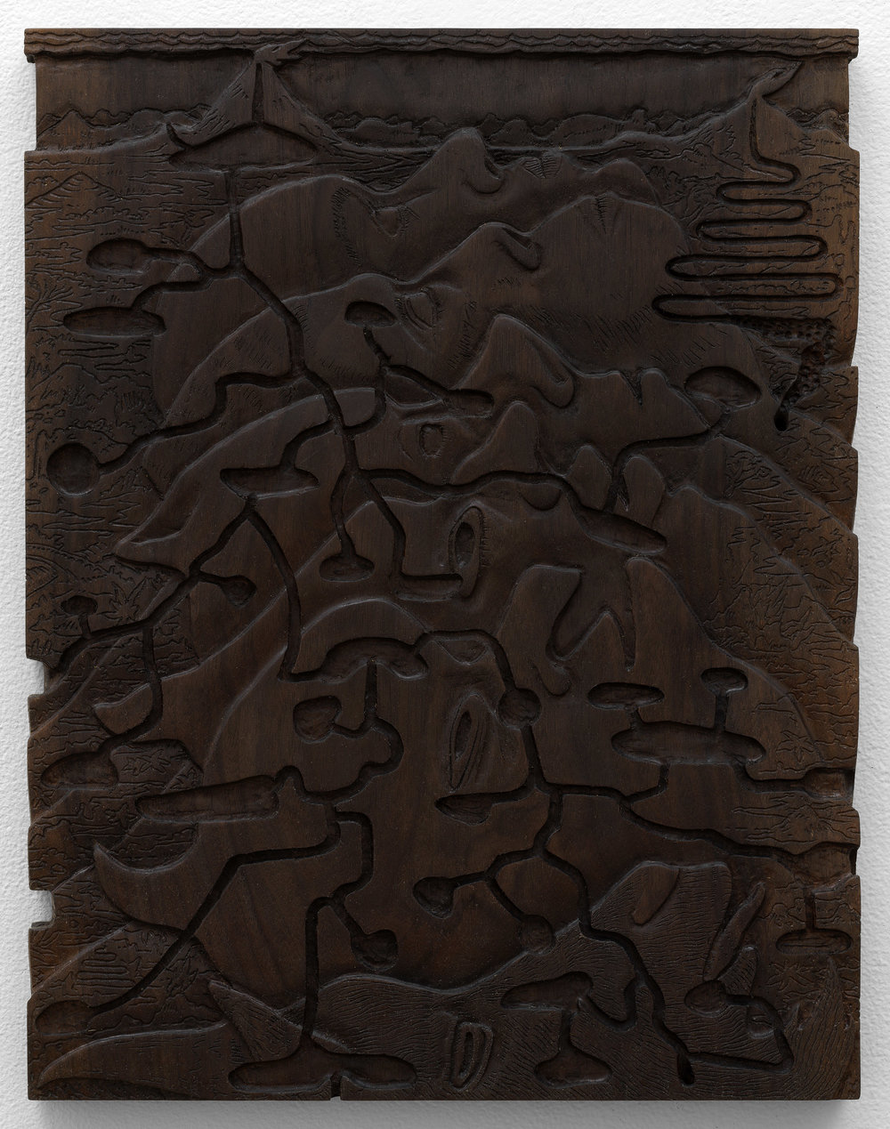 """Sinus , 2017, oxidized walnut, 18"""" x 14"""""""