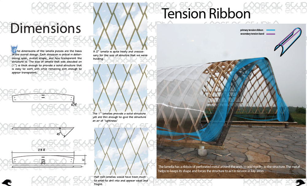 Dimension & Tension Ribbon
