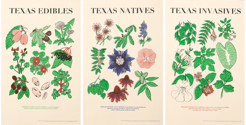 Texas Flora  prints are shown alongside  Frontier Heritage Waste,  a limited edition publication by the CIC&R.