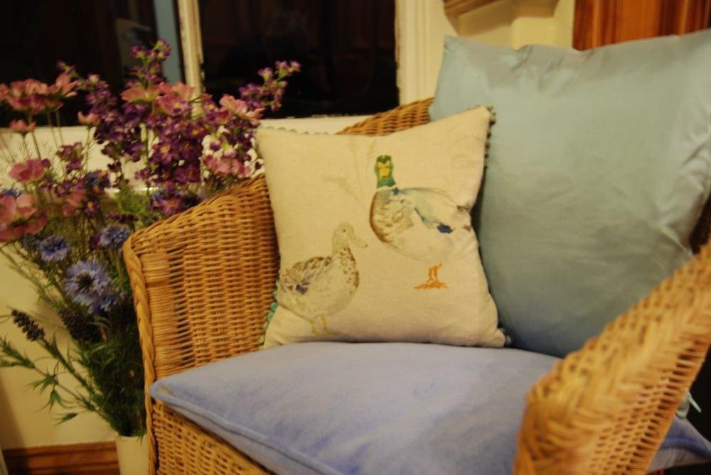Room 1 duck cushions!.jpg