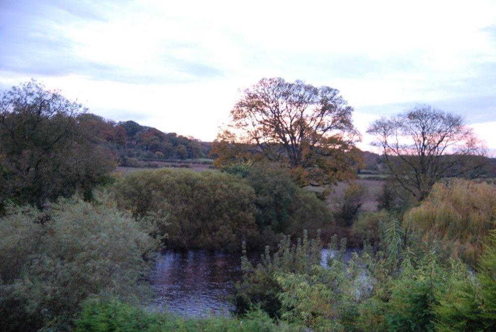 Early autumn morning.jpg