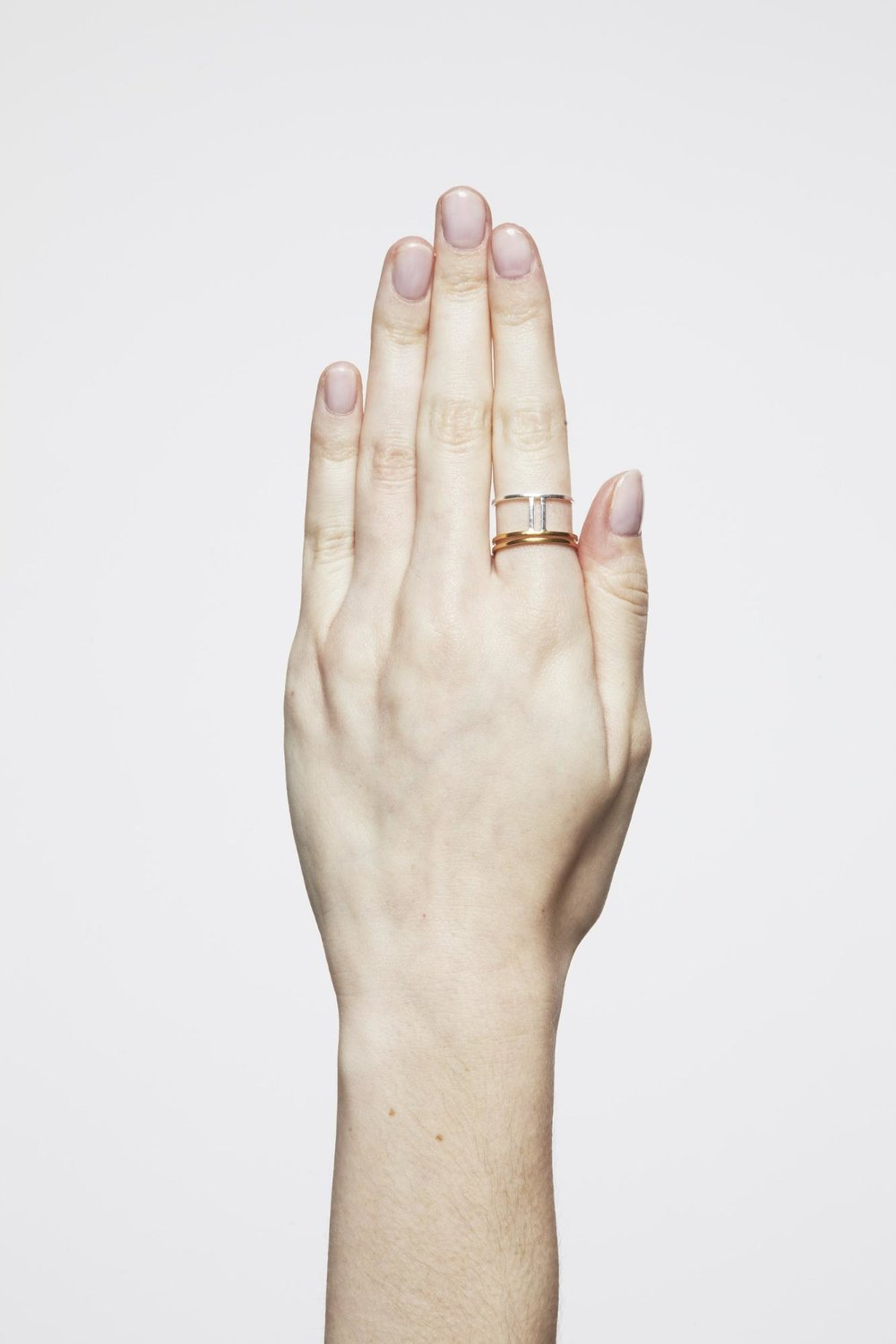 SIGNATURE COLLECTION - PARALLEL RING -