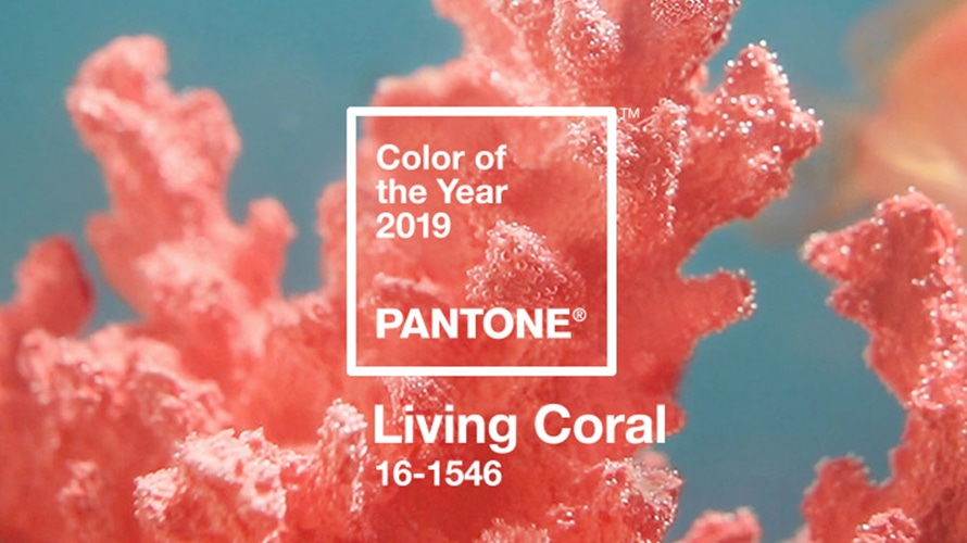 https://www.pantone.com/color-intelligence/color-of-the-year/color-of-the-year-2019