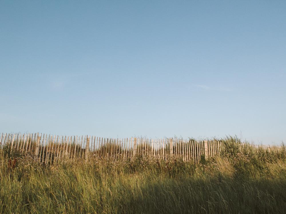 Haarkon Blue Sky Grass Coastal Humberston