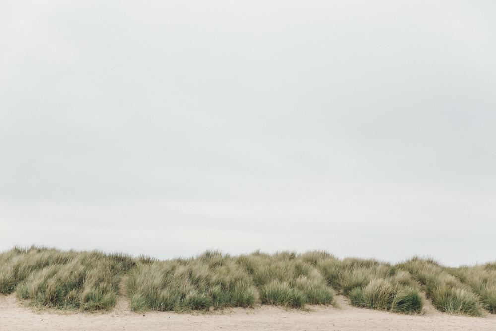 Haarkon Anglesey Dune