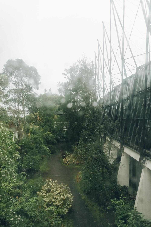 Haarkon Architecture Structure Building Glasshouse Steel Window Weather Rain Plant