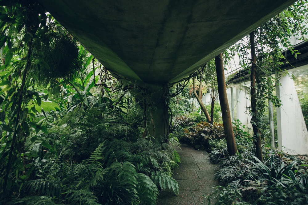 Haarkon Concrete Edinburgh Bridge Architecture Nature Garden