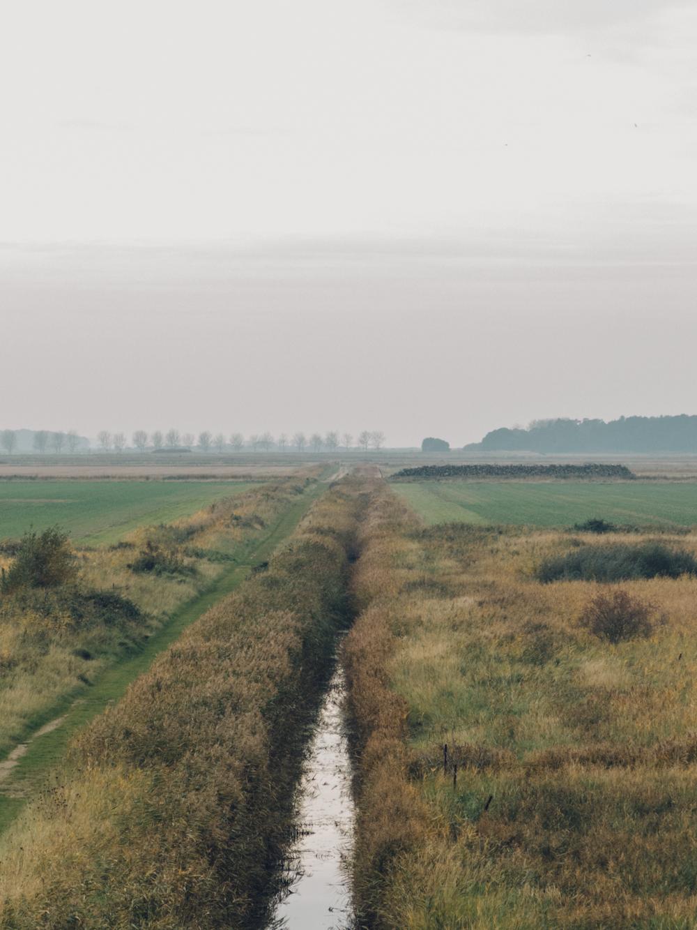Haarkon Norfolk River Mist Nature