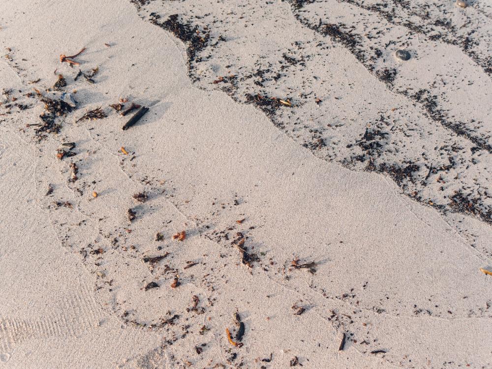 Haarkon Sand Beach Elgol
