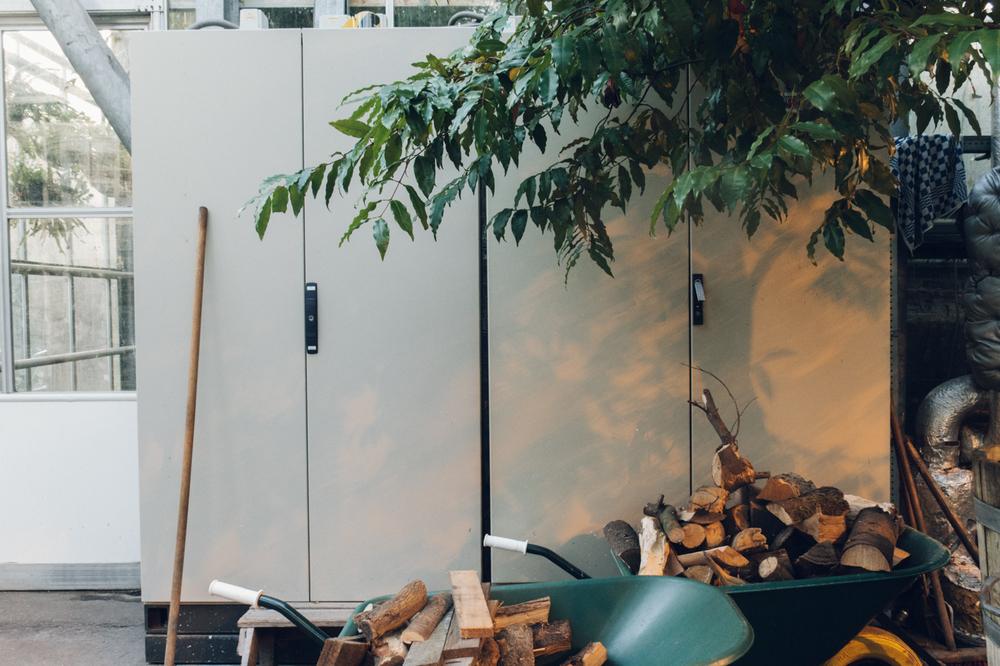 Light Haarkon Plant Garden Shadow Amsterdam Wood Tools Work