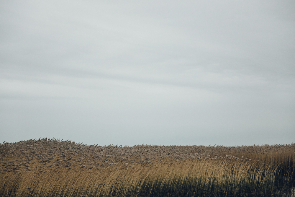 Haarkon North Norfolk Brancaster Coast Sea Marsh RSPB Boat Reeds Grass