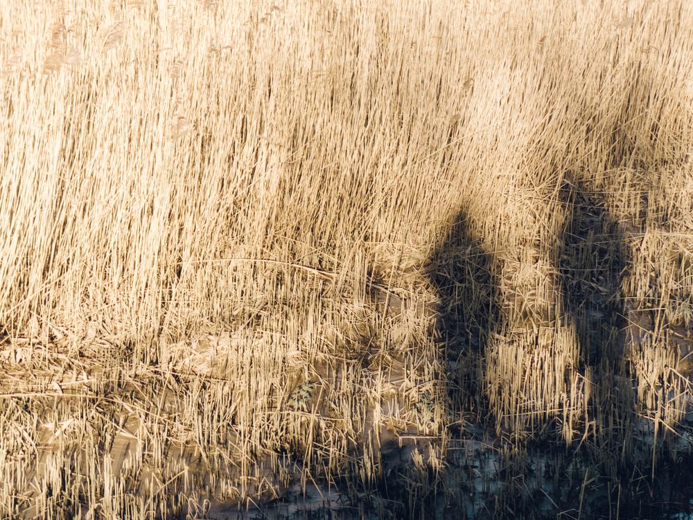 Haarkon Norfolk North Coast Seaside Sea Beach Design Travel Couple Love Shadow Light