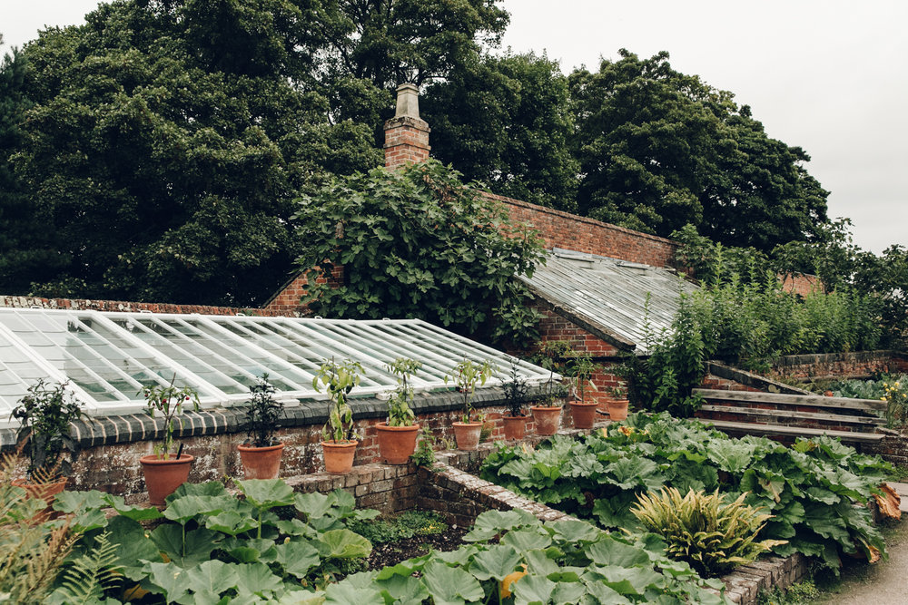 View of a greenhouse from the garden.