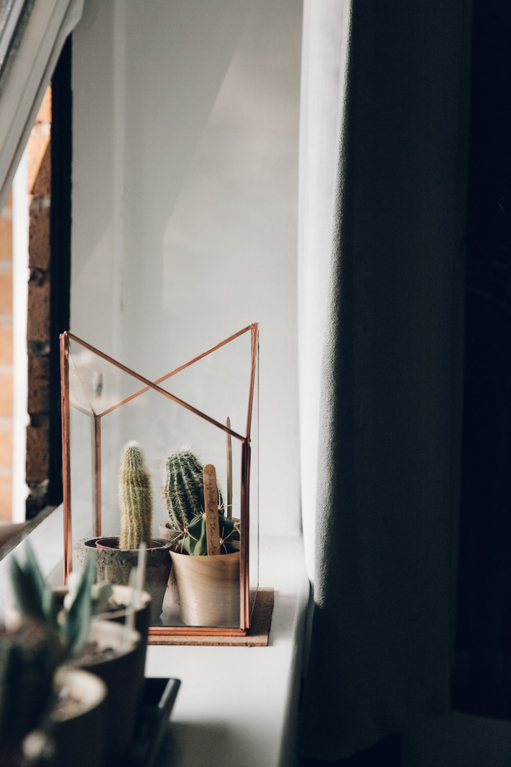 Cacti on the windowsill with copper details.