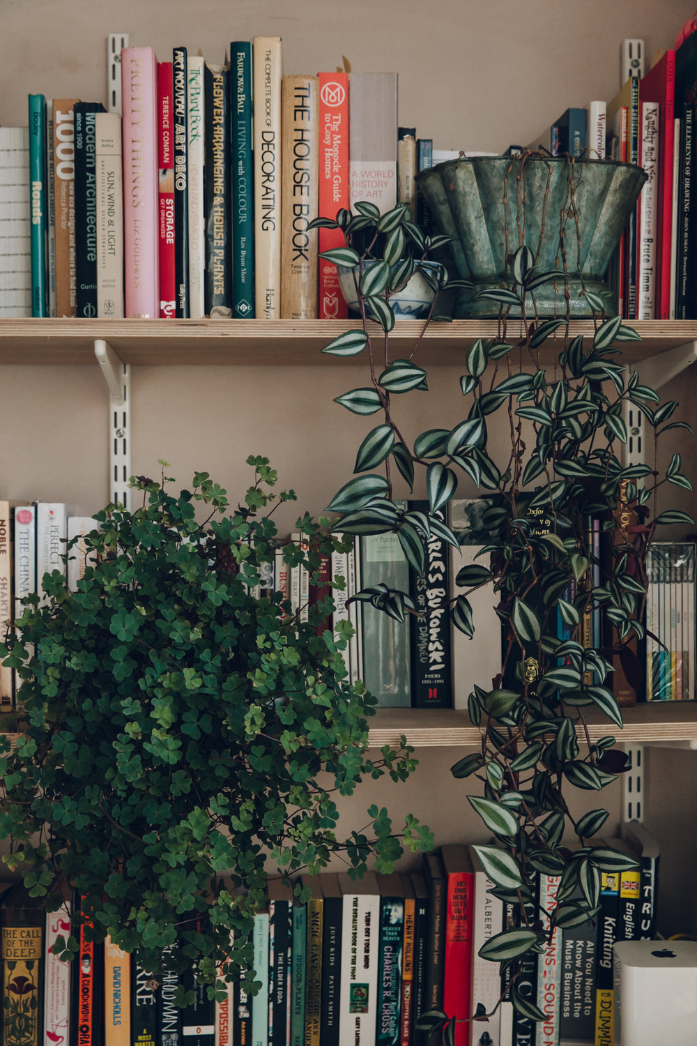 Plants and books.