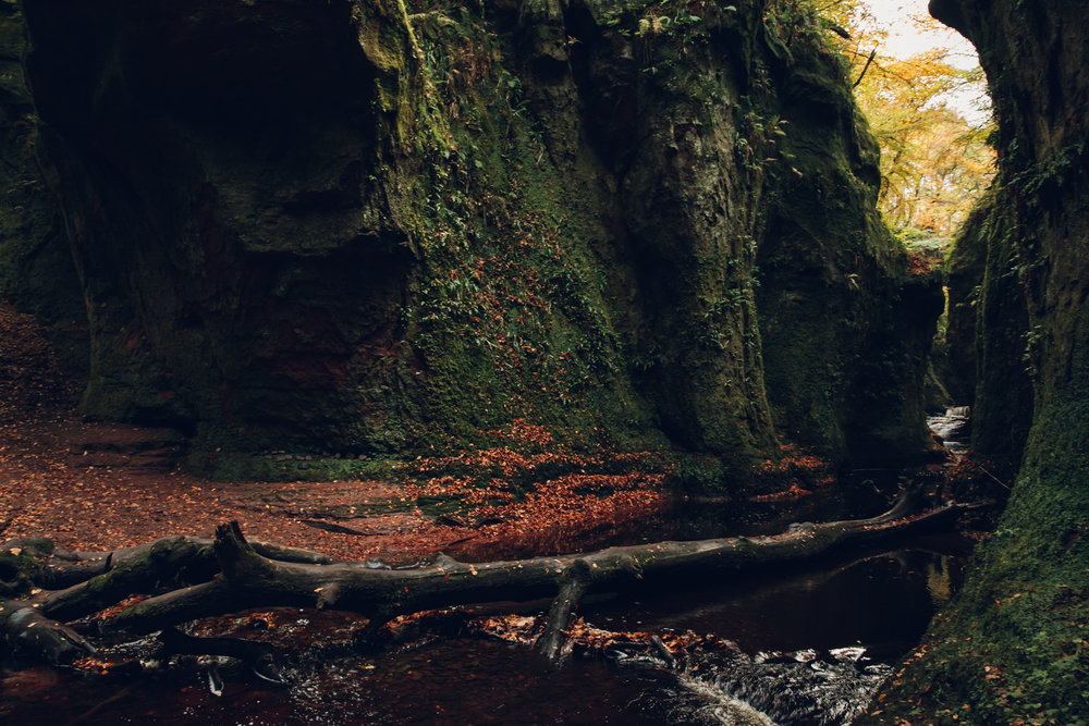Finnich Glen in Scotland.