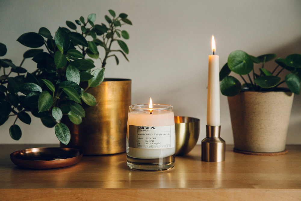 Le Labo Santal 26 scented candle amongst the plants at home.