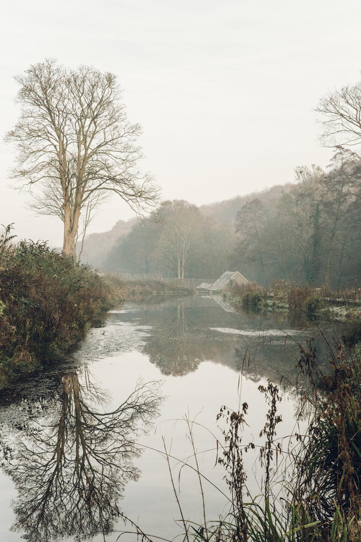 Winter walk alongside the mill pond at Shepherd Wheel.
