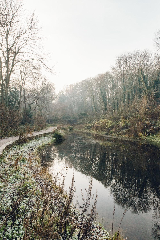 A frosty Winter walk alongside the mill pond at Shepherd Wheel in Sheffield.