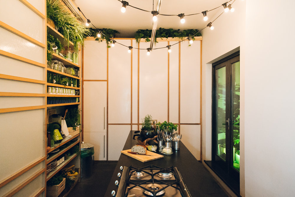 The greenery in the kitchen of the 'Outside In' house created by Pantone and Airbnb.