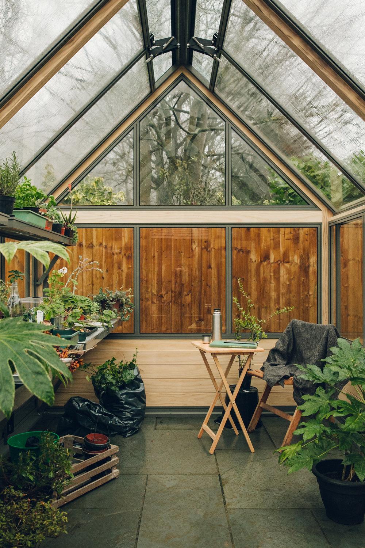 Plants inside a Cultivar greenhouse.