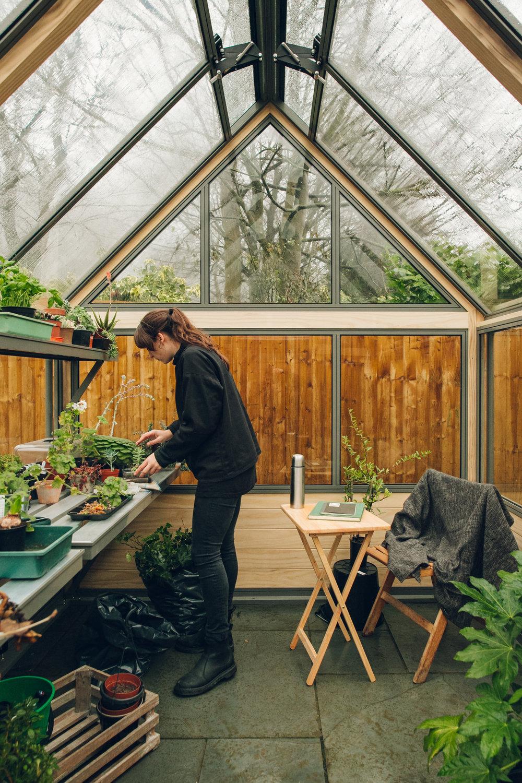 Gardening inside a Cultivar greenhouse.